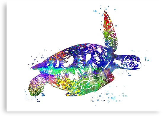 550x391 Sea Turtle, Watercolor Sea Turtle Canvas Prints By Rosaliartbook
