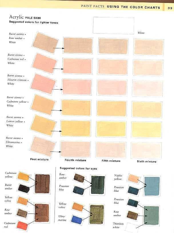Watercolor Skin Tone Chart At Getdrawings Free For Personal