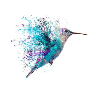 400x400 Not A Hummingbird, But I Love The Concept And The Watercolor Use