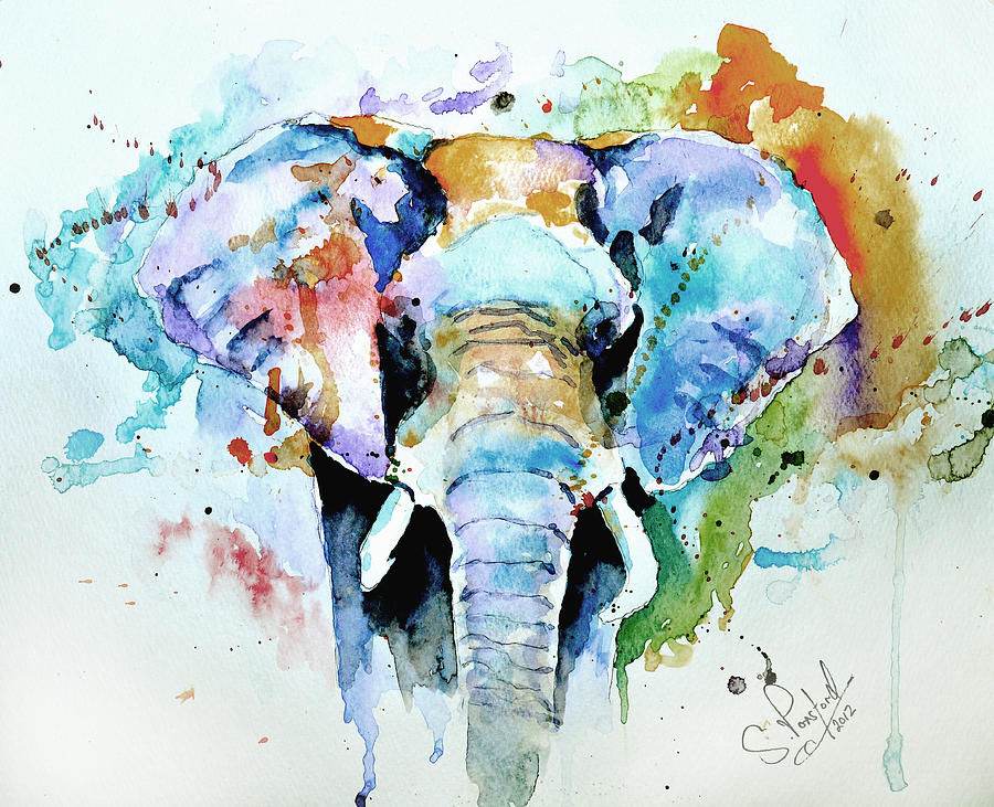 900x731 Splash Of Colour Painting By Steven Ponsford