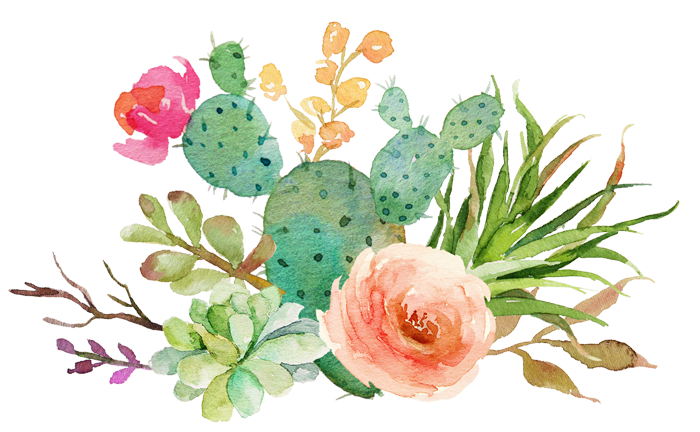 Watercolor Succulent Clipart at GetDrawings | Free download