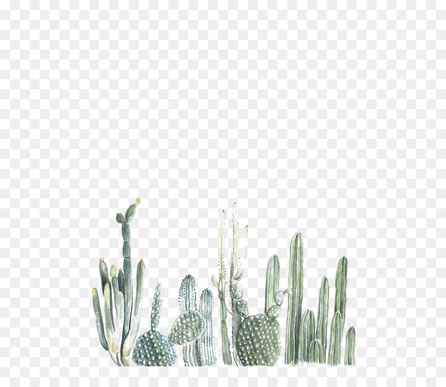 Watercolor Succulent Wallpaper At Getdrawings Com Free For