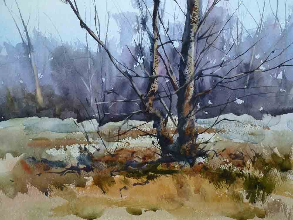 1000x750 Painting Trees In Watercolour