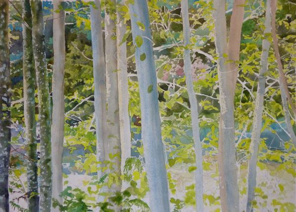 600x430 Painting Trees And Leaves Watercolor Demonstration