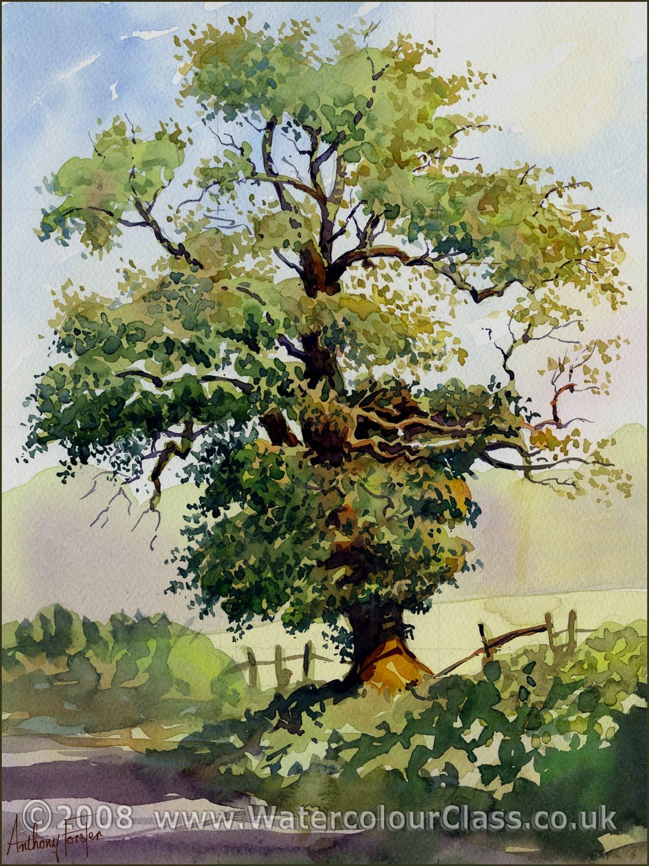 1125x1500 Pin By Dalene Van Rensburg On Trees Watercolor