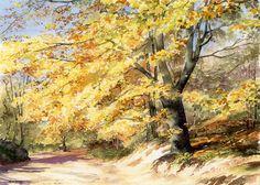 236x168 635 Best Art Watercolor Trees Images Watercolor