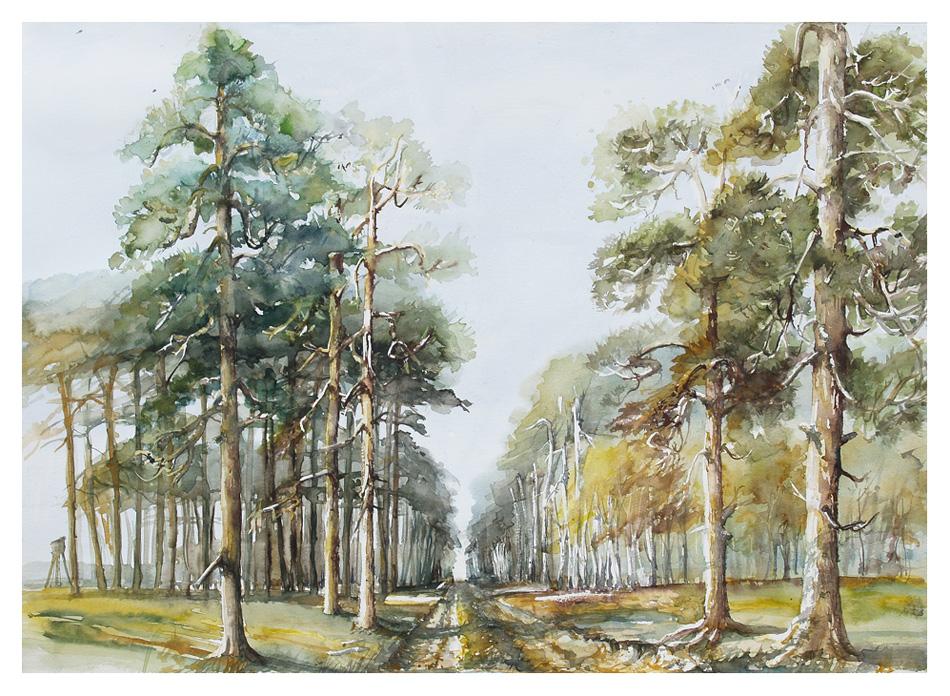 950x696 Solar Landscape With Pine Tree By Modliszqa