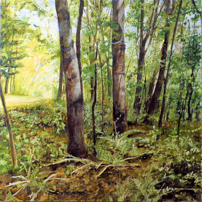 800x800 Watercolor Nature Art Vermont Tree Landscape Painting