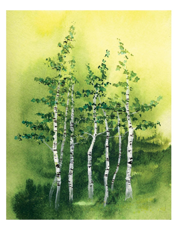 1160x1500 8x10 Tranquil Grove Fine Art Print Birch Trees Woods Forest