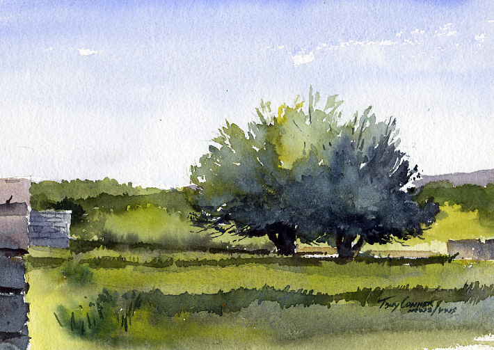 710x503 Fruit Trees, Early Watercolor Landscape Painting
