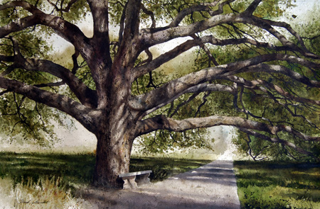 450x295 Century Tree Original Watercolor Painting