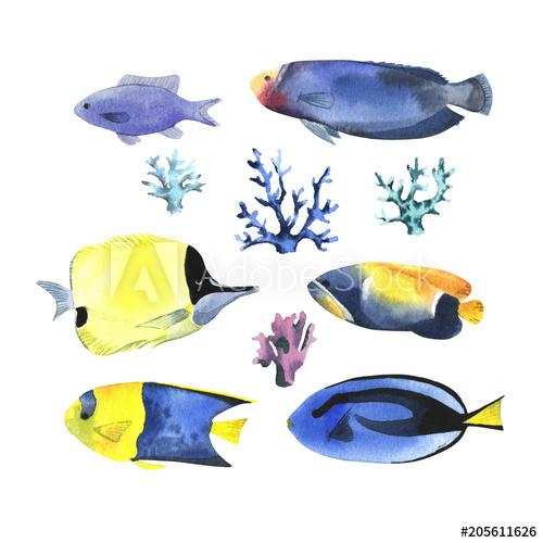 Watercolor Tropical Fish