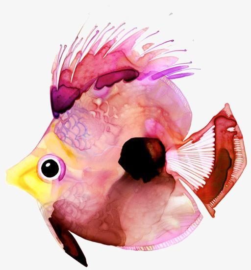 512x550 Fish, Fish Clipart, Watercolor Fish, Tropical Fish Png Image And