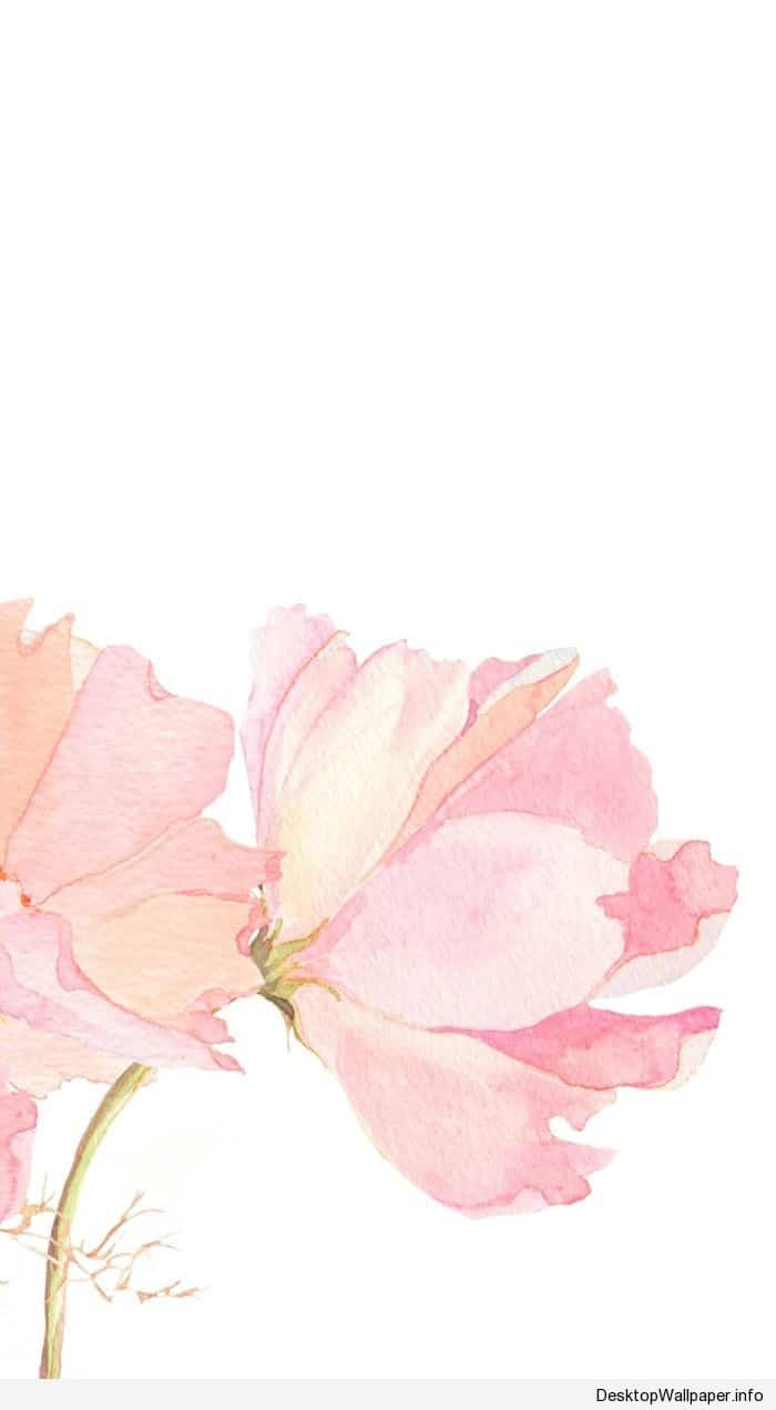 Watercolor Wallpaper Iphone At Getdrawings Free Download
