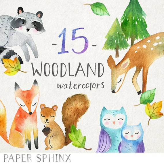 570x570 Watercolor Woodland Animals Clipart Forest Animals Clip Art Etsy