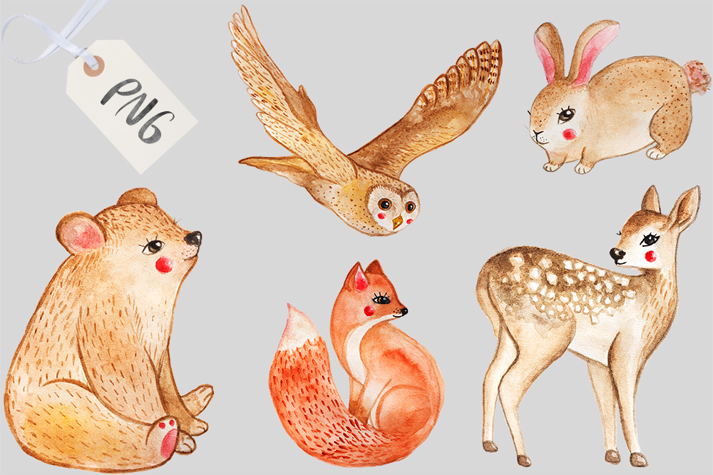1000x666 Watercolor Woodland Animals By Miracles Everywhere