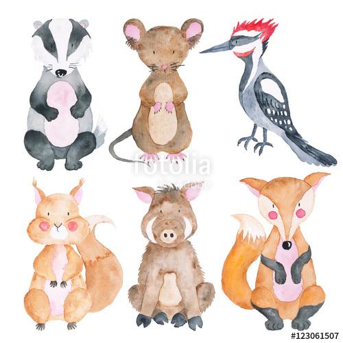 500x500 Woodland Animals Set Of Watercolor Illustrations Cute Animals