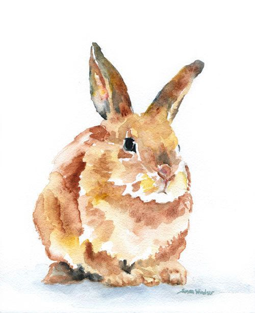 500x613 Woodland Animals Watercolor Note Card Set By Susanwindsor On Etsy