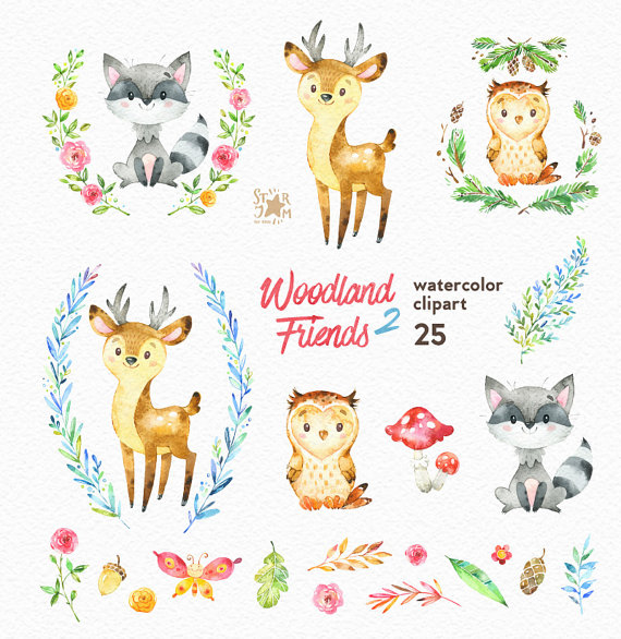 570x586 Woodland Friends 2. Watercolor Animals Clipart, Forest, Deer