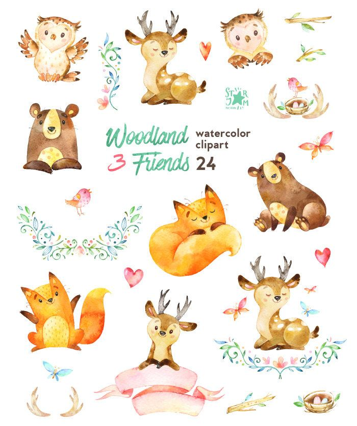 700x837 Woodland Friends 3. Watercolor Animals Clipart By Starjamforkids