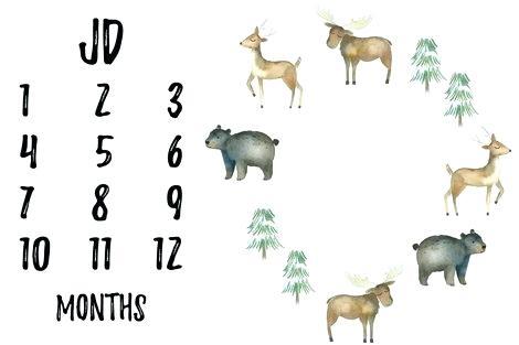 470x313 Blanket Animals Customized Watercolor Woodland Milestone Baby