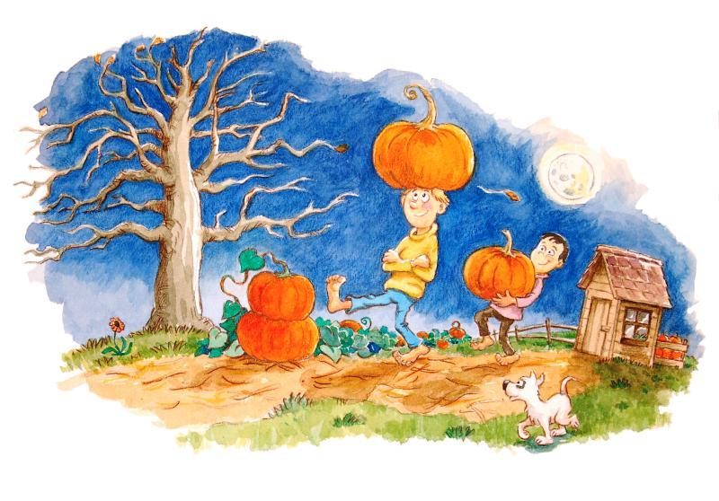 800x558 Kids Book Illustration