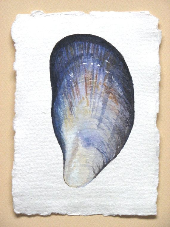 Watercolour Shell Paintings at GetDrawings com | Free for