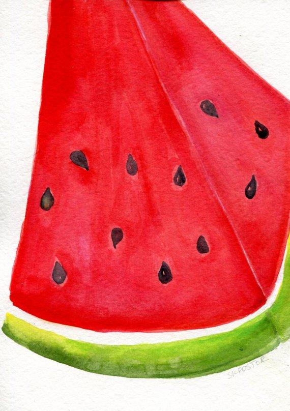 570x808 Watermelon Watercolor Painting Original Fruit 5 X 7 Original