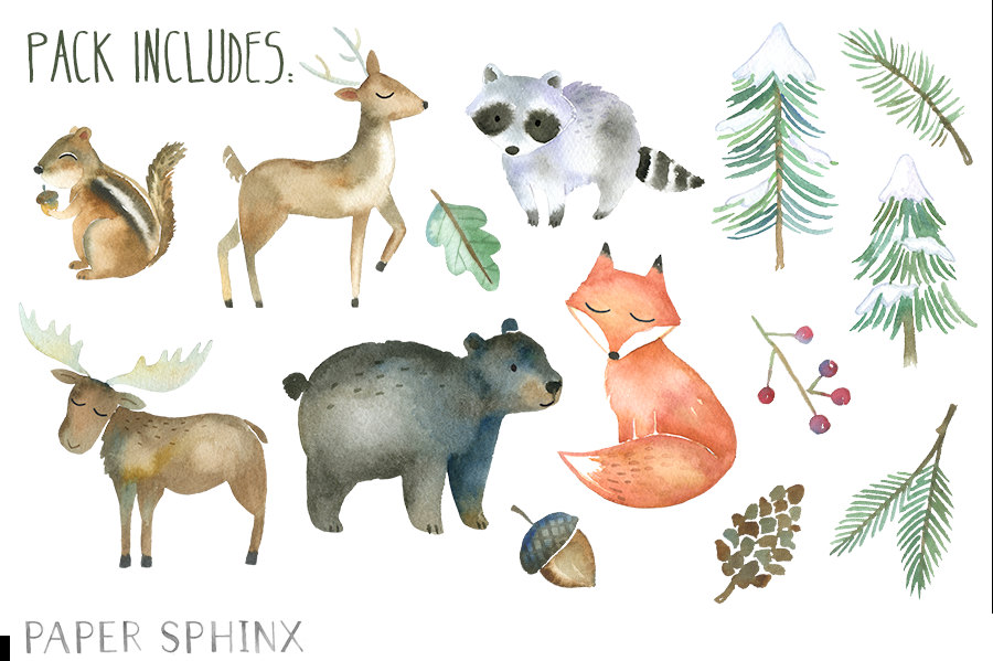 Woodland Animals Watercolor