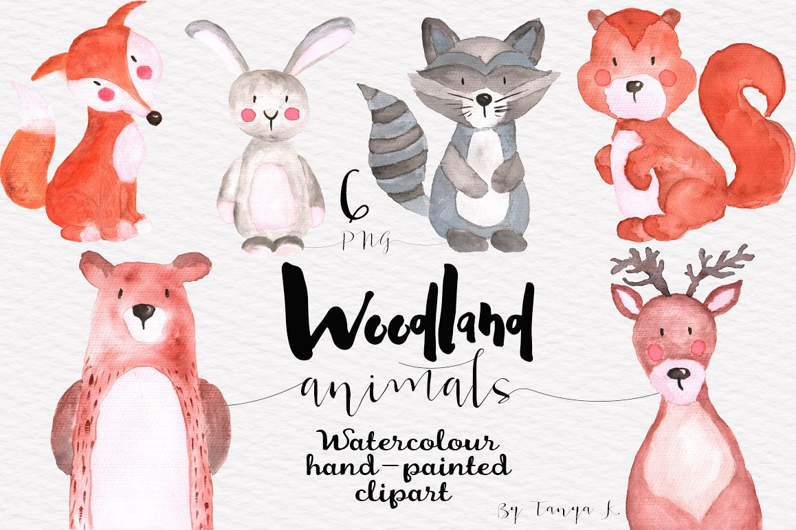 1158x772 Woodland Animals Watercolor Set
