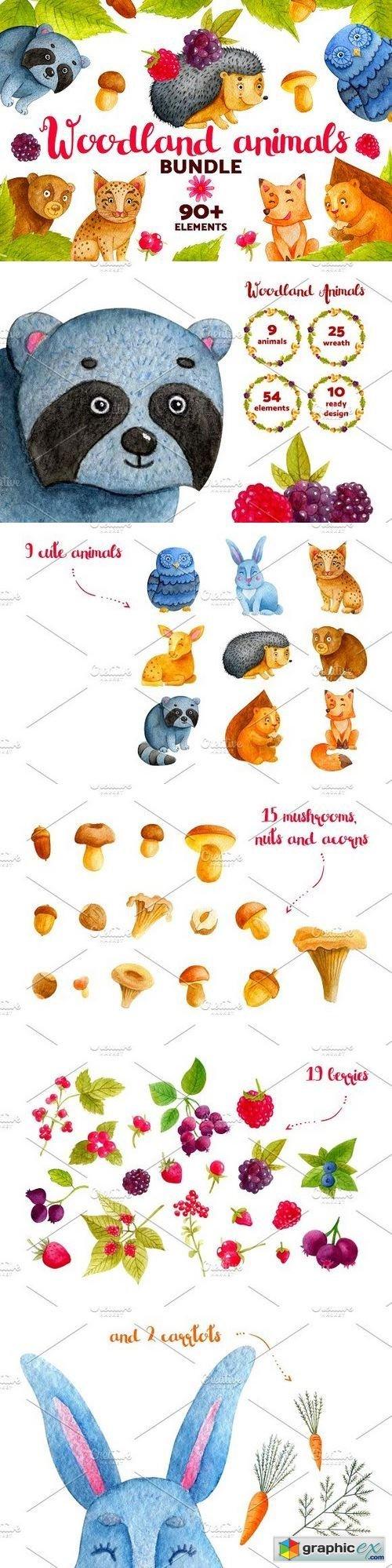 500x1998 Woodland Animals. Watercolor Bundle Free Download Vector Stock