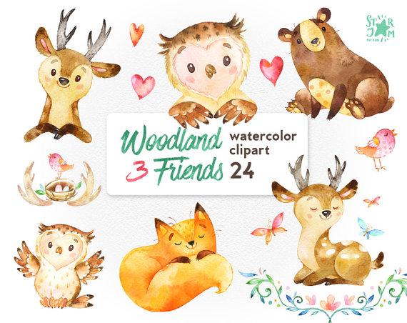 570x452 Woodland Friends 3. Watercolor Animals Clipart, Fox, Forest, Deer