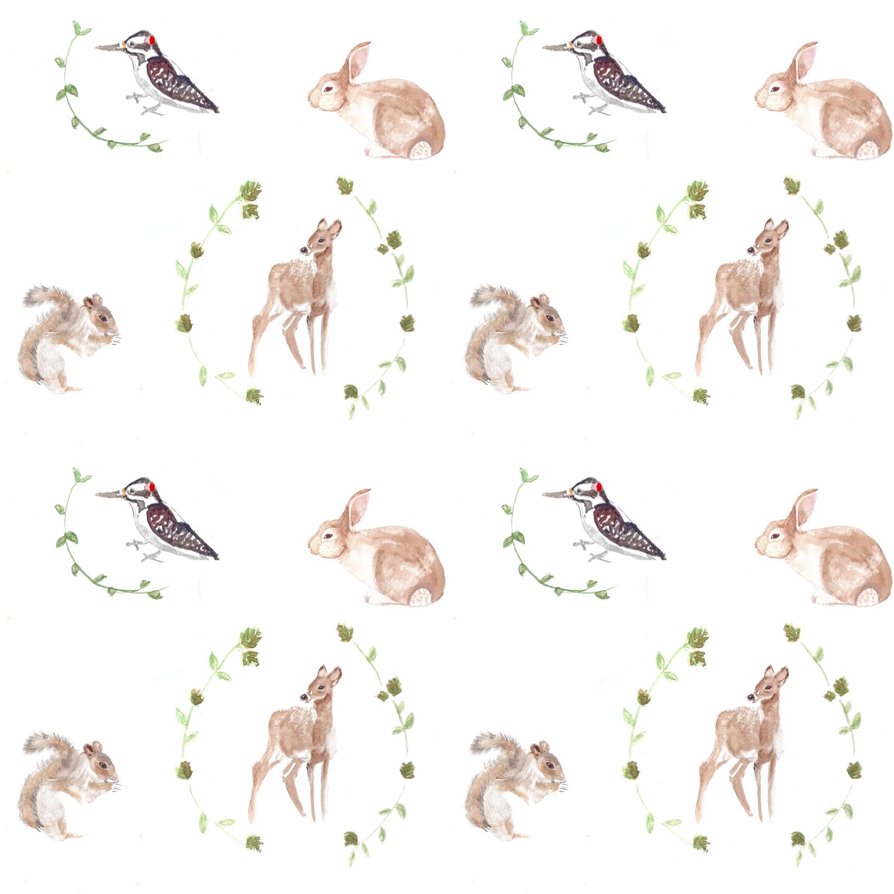 1800x1800 Animal Danielle Elizabeth Malin Design Illustration