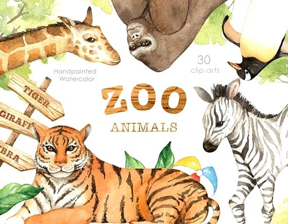 570x443 Woodland Animals Nursery Art Woodland Animal Nursery Art