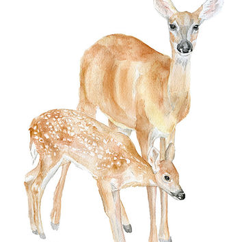 354x354 Doe And Fawn Watercolor Painting Giclee From Susan Windsor