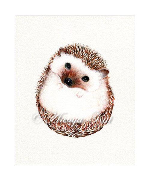500x600 Drawn Hedgehog Illustration