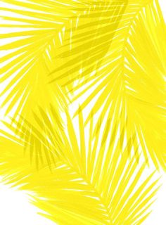 236x320 Yellow Watercolor Background Watercolor Background