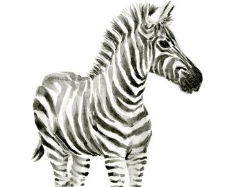 340x270 Zebra Watercolor Baby Animal Art Print Whimsical Animal Etsy